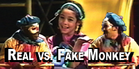 Real vs. Fake (1999)